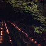 2014真田山陸軍墓地「万灯会」 &夏きらり