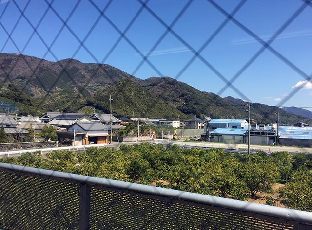 和歌山県有田川町社会福祉協議会